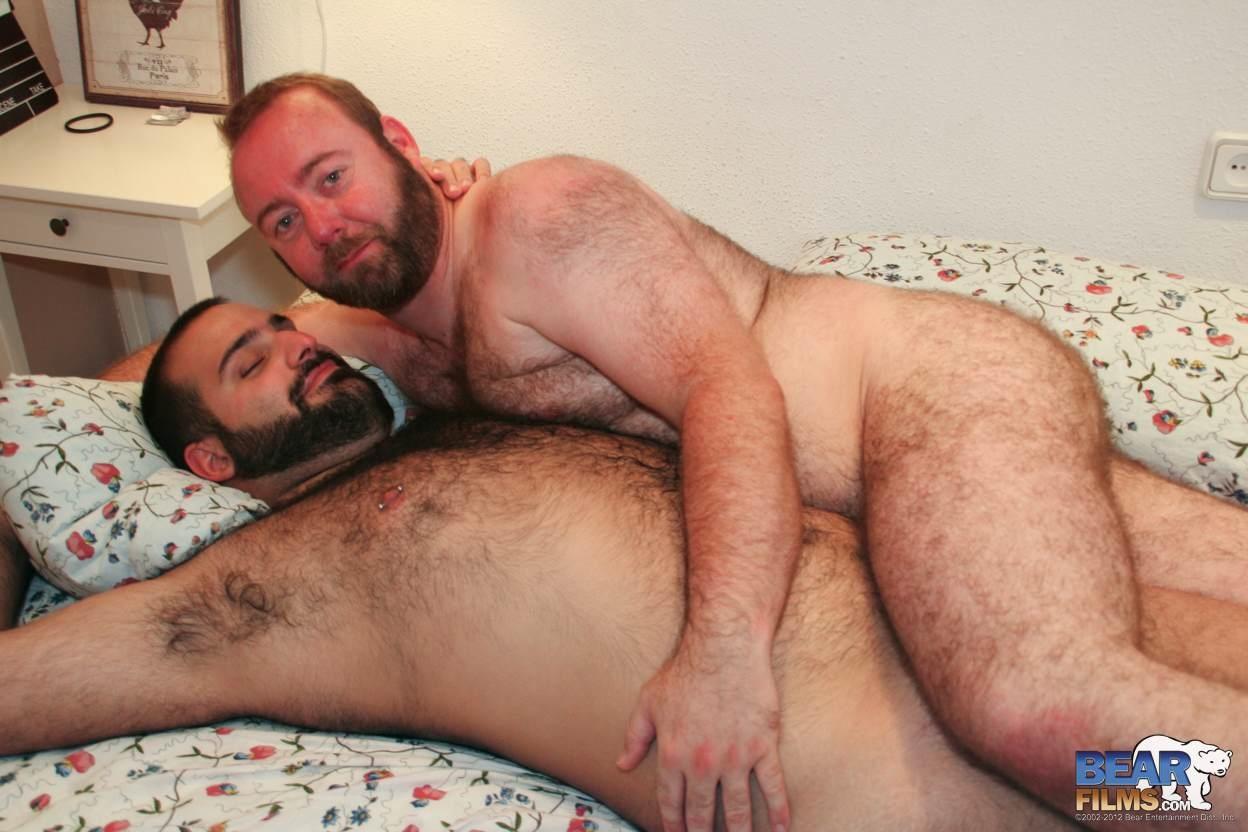 Порно Видео Толстые Медведи Геи
